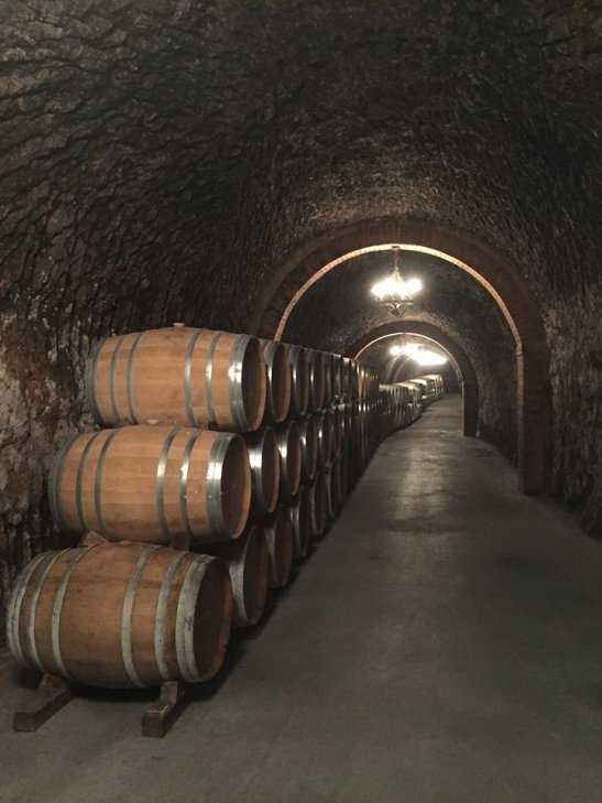 The caves keep the wine at a constant temperature during the aging process