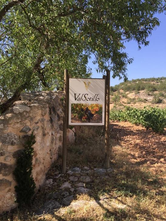 The Val Sotillo vineyards